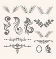 floral ornament collection vector image vector image
