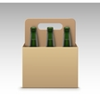 Glass Green Bottles of Light Beer with Packaging vector image