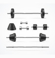 realistic detailed 3d different barbell set vector image