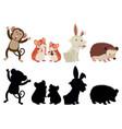 set varios animals vector image vector image