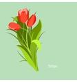Spring flowers Tulip Flet design vector image vector image