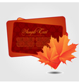 with maple leaves vector image