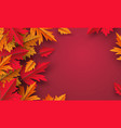 autumn leaves on red background design vector image vector image