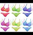 Bikini outfits vector image