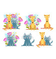 funny pets cat and dog collection with flowers vector image