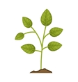 green plant icon vector image vector image