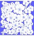 Spring White Flowers vector image