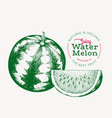 watermelon and a piece watermelon hand drawn vector image