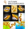 autumn design templates set vector image