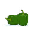 Green Bell Pepper Isolated on White vector image vector image