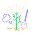 icon tree planting landscaping vector image
