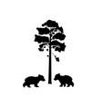 two cub bears near tree silhouette animal vector image vector image