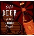 Glassware bottle of beer with barrels in cellar vector image