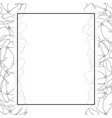 arabian jasmine outline banner card border vector image vector image