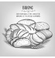 banner baking hand drawn vector image vector image