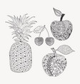 hand drawn doodle set fruits for coloring book vector image vector image
