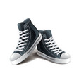 sneakers isolated vector image vector image