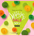 spring sale banner design special offer for vector image vector image