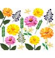 summer floral pattern card background vector image