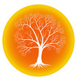 abstract tree with bare branches on an orange vector image vector image