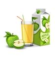 Apple juice set vector image