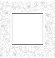 begonia flower outline picotee banner card vector image vector image