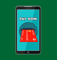 button pay now on smartphone screen vector image