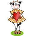 Cow heart vector image vector image
