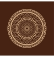 Flower mandala over dark brown vector image vector image