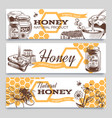 honey banners hand drawn engraved honeycomb bee vector image