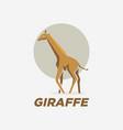 logo giraffe gradient colorful style vector image vector image