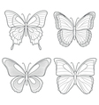 set butterflies isolated objects vector image