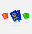 set citizenship or foreign passport id vector image
