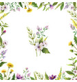 watercolor hand painted card with field vector image vector image
