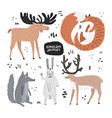 woodland animals hand drawn flat set vector image
