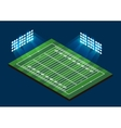 American Football Field vector image