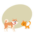 akita inu dog and red cat kitten characters vector image vector image