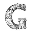 ancient antique capital letter g with an ornament vector image vector image
