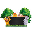 blackboard with many animals in park vector image vector image