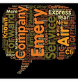 express air freight text background wordcloud vector image vector image
