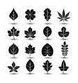 leaf icon2 vector image