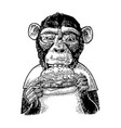 monkey wearing a t-shirt eating a hamburger burger vector image vector image