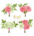 set collection flowers roses on white background vector image vector image