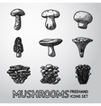 Set of freehand MUSHROOMS icons - porcini vector image vector image
