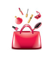 women bag cosmetics isolated vector image vector image