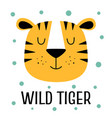 card with cartoon head of cute tiger vector image