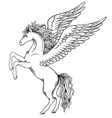 pegasus the object for the coat of arms vector image