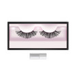 realistic detailed 3d false eyelashes in package vector image