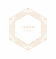 stylish geometric emblem and template for text vector image