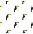 toucan ramphastos vitellinus pattern seamless vector image vector image